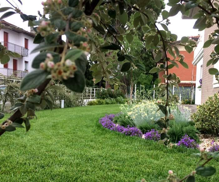 Progettazione, realizzazione giardini