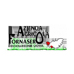 Azienda Agricola Fornasero - Aziende agricole Lequio Tanaro