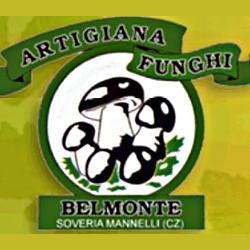 Artigiana Funghi Belmonte - Funghi e tartufi Soveria Mannelli