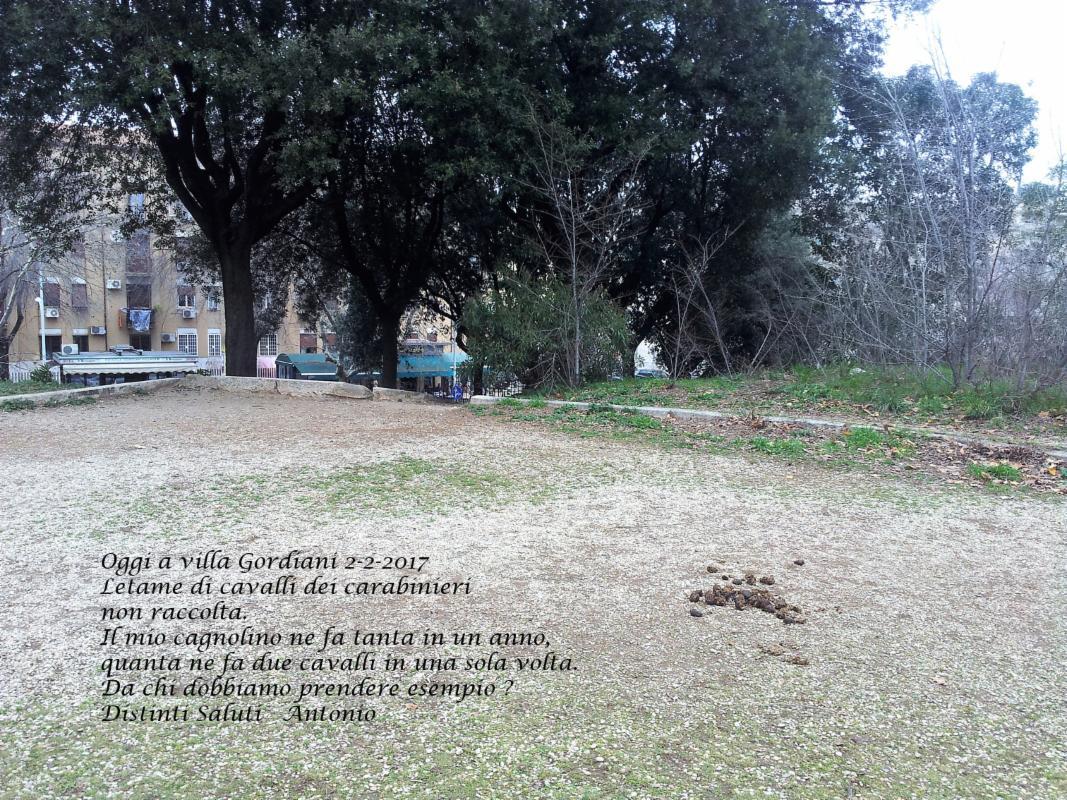 Ufficio Di Stato Civile Roma : Lite in ufficio anagrafe a roma stacca orecchio a morsi a un uomo